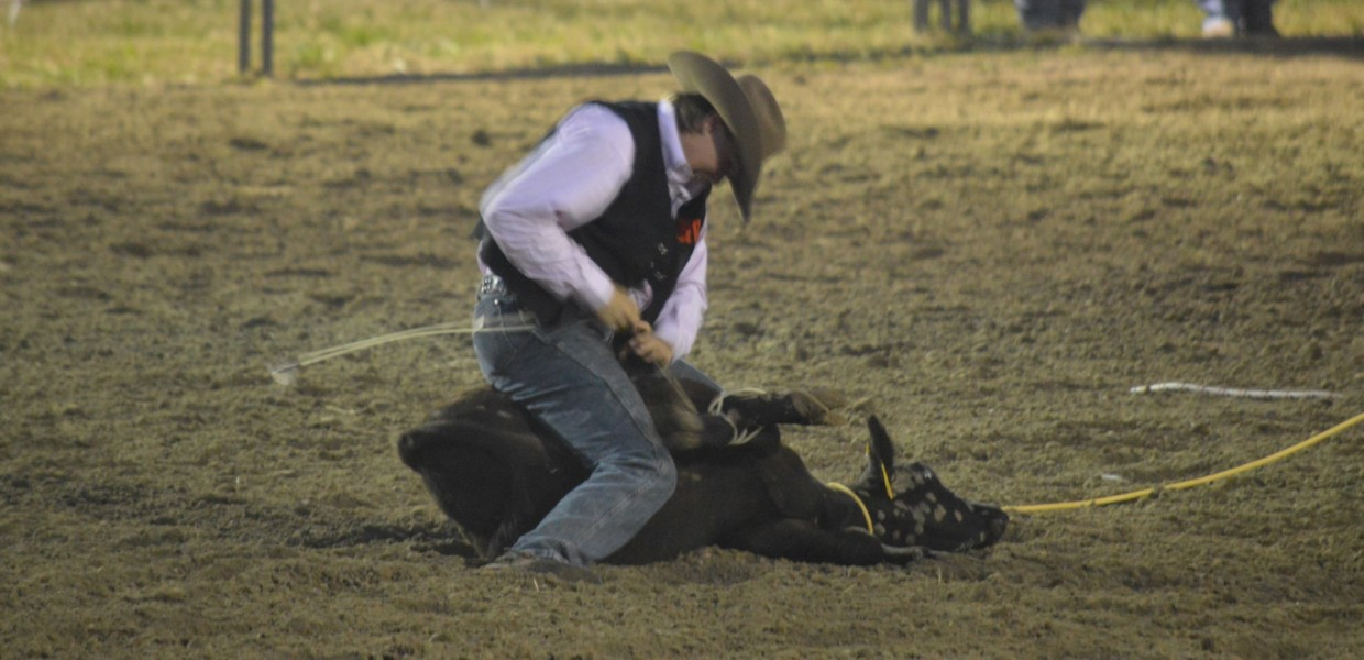 Photo for Viking Rodeo Teams Compete at NWCC