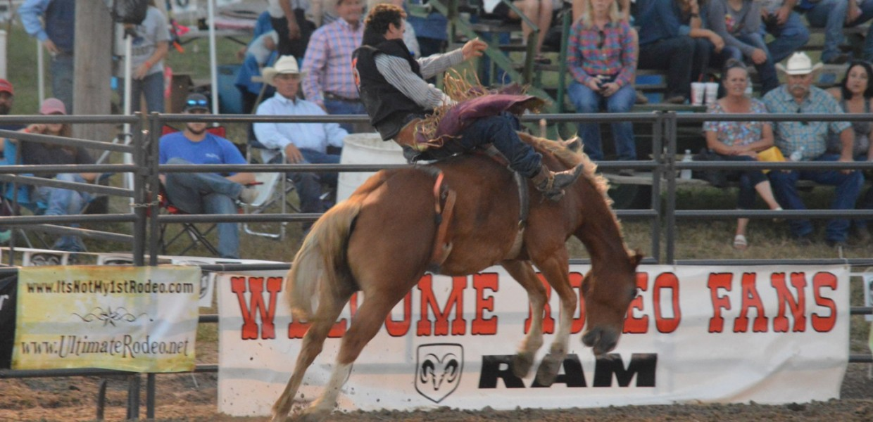 Photo for Viking Rodeo Teams Capture Ozark Region Championships